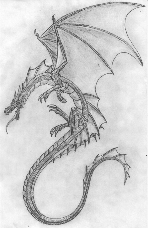 Excellent Dragon Pencil Sketch Simple Pencil Drawings | Pencil Dragon By Scatha The Worm Traditional Art Pics