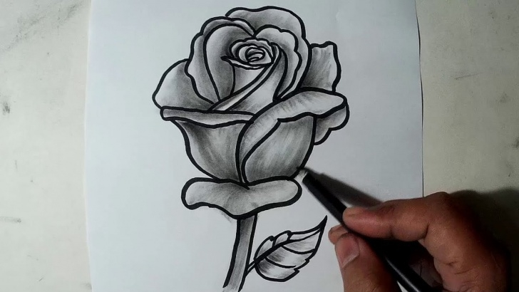 Excellent Drawing Pencil Shading Easy How To Draw A Rose || Pencil Drawing, Shading For Beginners Image