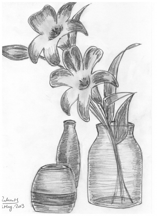Excellent Flower Pot Pencil Sketch Ideas Vase With Roses, Drawn In 2013 #vase #flowers #roses #pencil #sketch Image