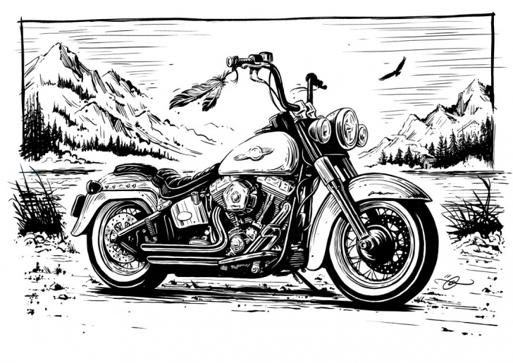 Excellent Harley Davidson Pencil Drawings Ideas Harley Davidson Sketch At Paintingvalley | Explore Collection Of Pictures