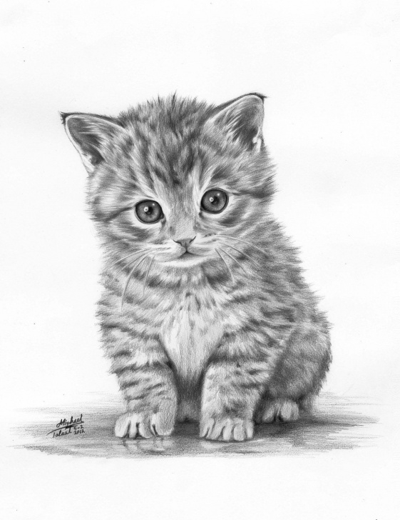 Excellent Kitten Pencil Drawing for Beginners Animals Drawings. $100.00, Via Etsy. | Draw | Animal Drawings Image