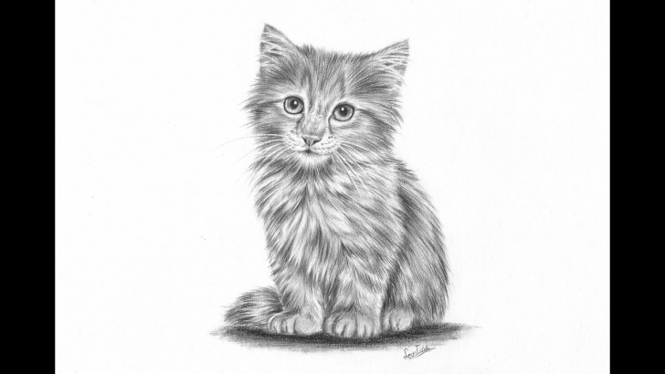Excellent Kitten Pencil Drawing Tutorials How To Draw A Realistic Kitten Part 2: Fur And Details | Leontine Van Vliet Images