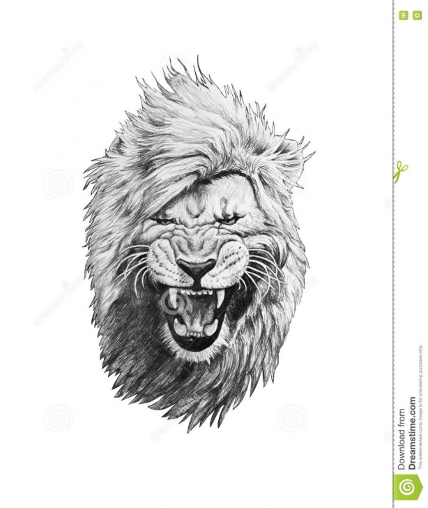 Excellent Lion Pencil Drawing Lessons Pencil Drawing Of A Lion Head Stock Illustration - Illustration Of Photos