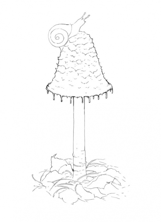 Excellent Mushroom Drawings Pencil Easy How To Draw A Mushroom - Pen And Ink Image