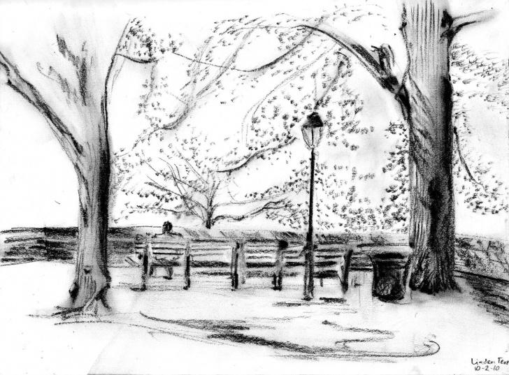 Park Pencil Drawing