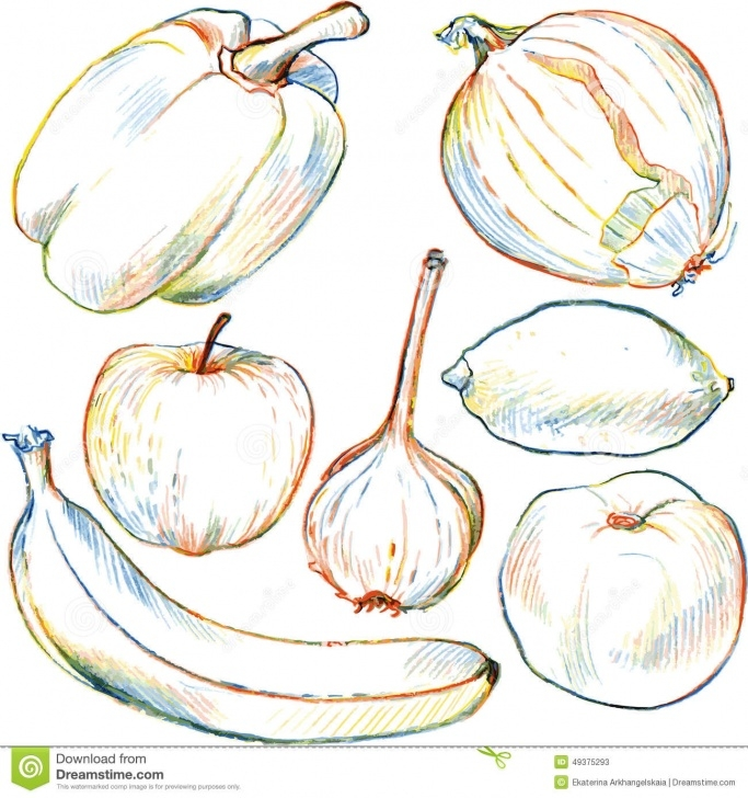 Excellent Pencil Sketches Of Fruits And Vegetables Tutorials Set Of Drawing Vegetables And Fruits Stock Vector - Illustration Of Picture