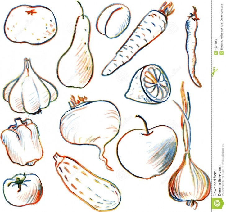 Excellent Vegetables Pencil Drawing Tutorials Set Of Drawing Vegetables And Fruits Illustration 49241159 - Megapixl Picture