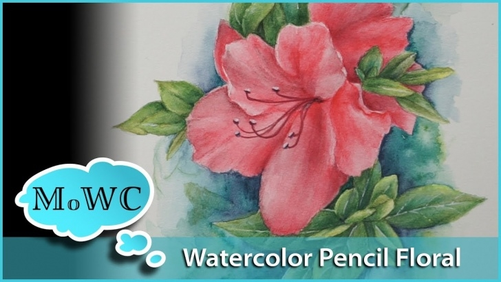 Excellent Watercolor Pencil Flowers for Beginners Azalea Floral Painting With Watercolor Pencil Picture