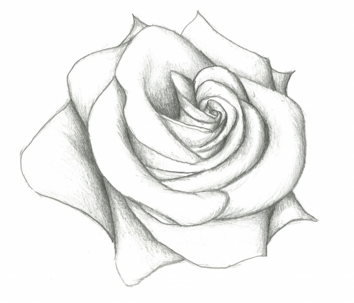 Fantastic Basic Pencil Art Ideas Learn Pencil Sketching At Paintingvalley | Explore Collection Of Image