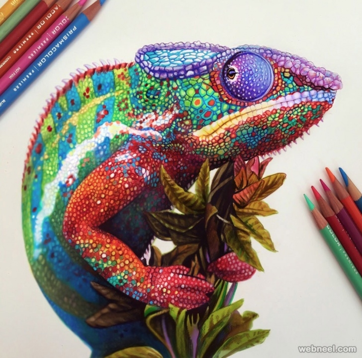 Fantastic Beautiful Crayon Drawings Tutorials 50 Beautiful Color Pencil Drawings From Top Artists Around The World Picture