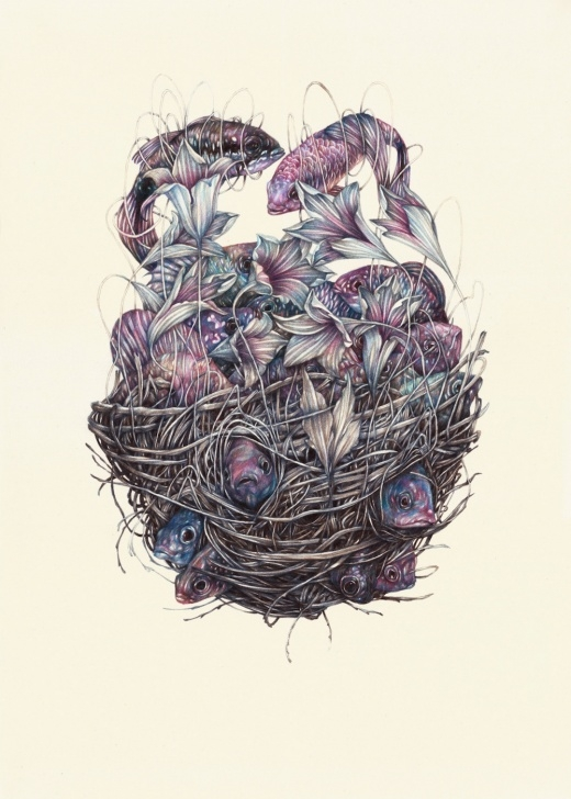 Fantastic Colored Pencil Drawings Techniques New Detailed Colored Pencil Drawings Of Entangled Flora And Fauna By Images