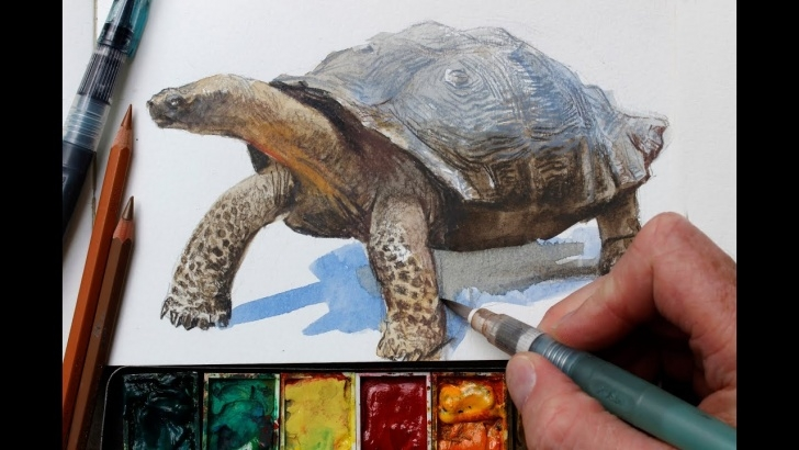 Fantastic Colored Pencil Water Ideas Watercolor + Colored Pencils = Fast, Realistic Textures Photo
