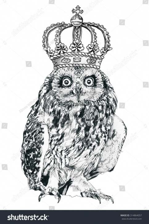 Fantastic Crown Pencil Drawing Techniques Royal Owl Crown Pencil Drawing Stock Illustration 314864057 Photo