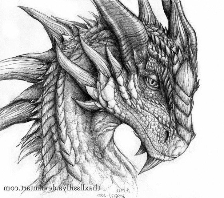 Fantastic Dragon Pencil Drawing Step by Step Dragon Pencil Sketch At Paintingvalley | Explore Collection Of Pics