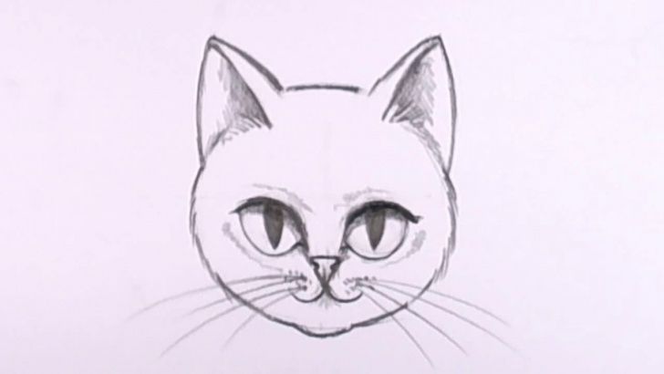 Fantastic Easy Cat Pencil Drawings Techniques for Beginners Cat Sketch Easy At Paintingvalley | Explore Collection Of Cat Pictures