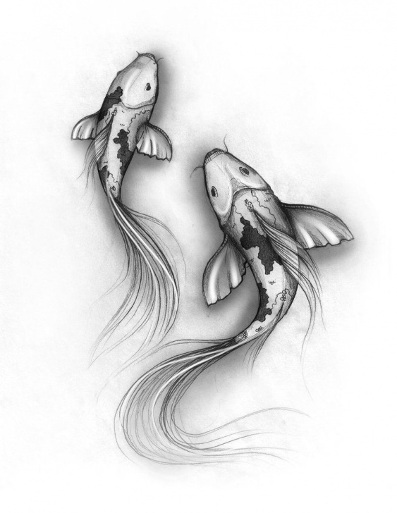 Fantastic Fish Pencil Sketch Ideas Fish Pencil Sketch At Paintingvalley | Explore Collection Of Pics