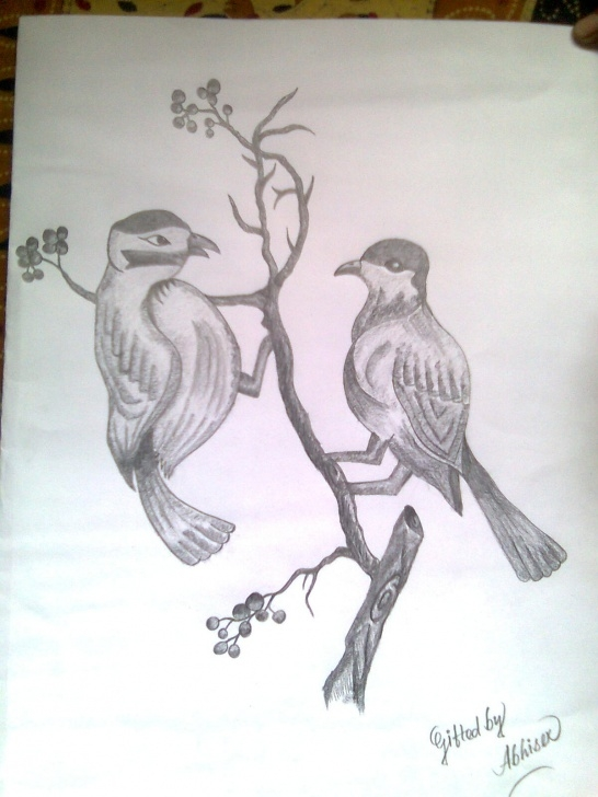 Fantastic Love Birds Pencil Sketch Lessons Love Birds Sketch At Paintingvalley | Explore Collection Of Love Picture