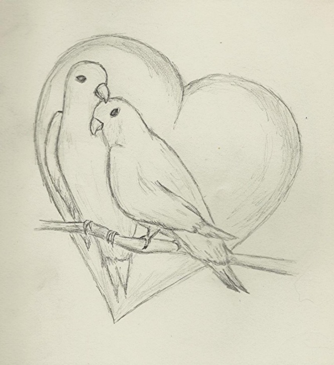 Fantastic Love Birds Sketch Ideas Love Birds Sketch Images At Paintingvalley | Explore Collection Photo