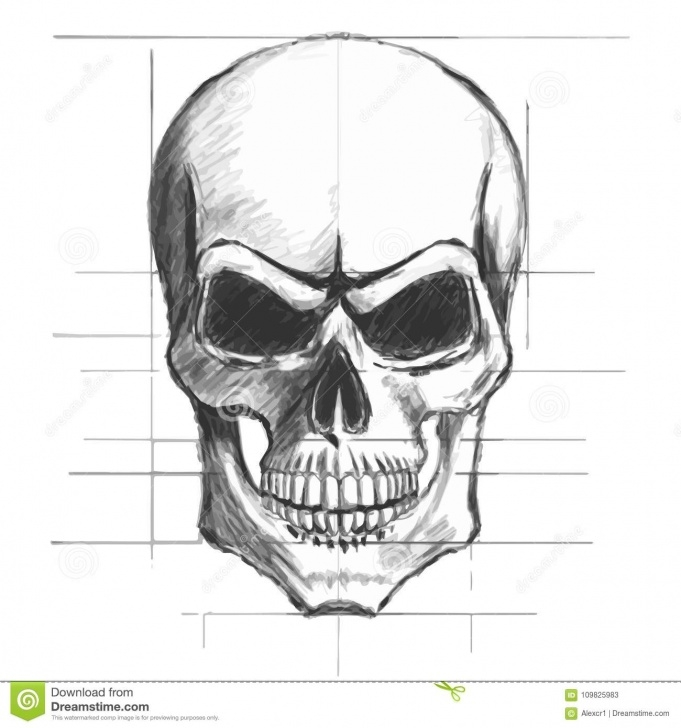Fantastic Skull Pencil Drawings Easy Skull Pencil Sketch Vector Stock Vector. Illustration Of Horror Pictures