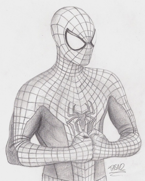 Fantastic The Amazing Spider Man Drawing In Pencil Free The Amazing Spider-Man 2 Spidey Sketch By Mprojects On Deviantart Images