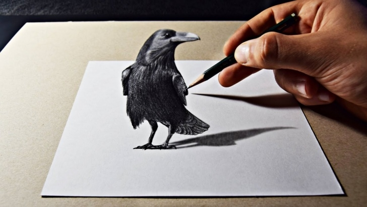 Fascinating 3D Pencil Sketch Lessons 3D Pencil Art Raven Drawing Image