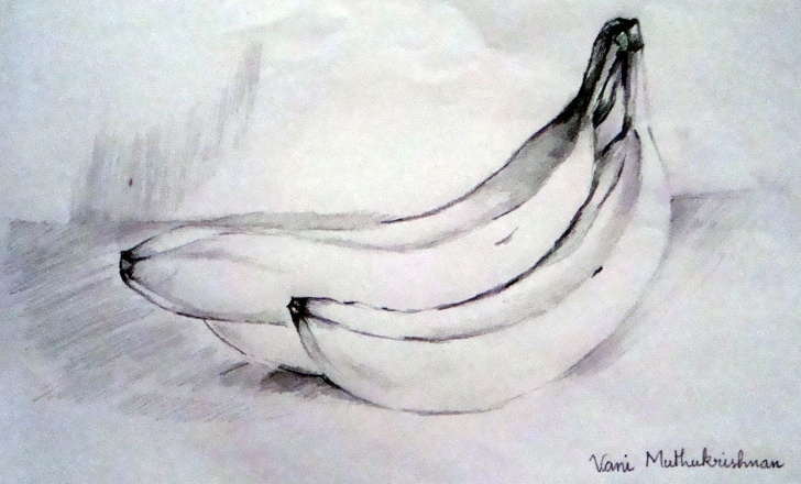 Fascinating Banana Pencil Sketch for Beginners Banana Pencil Sketch And Easy Pencil Art Drawings - Yahoo Image Pics
