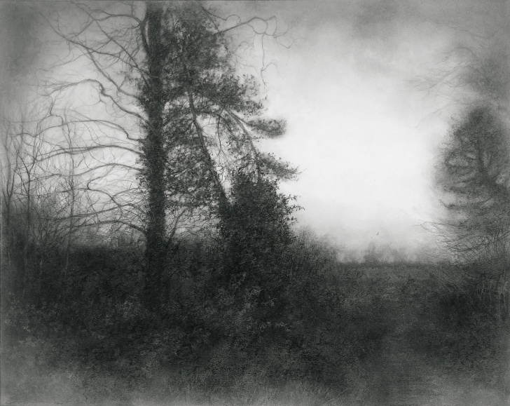 Fascinating Black And White Charcoal Drawings Courses A Way Through (Black & White Charcoal Drawing Of Misty Landscape W Spruce  Tree) Pics