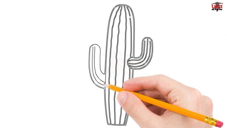 Fascinating Cactus Pencil Drawing Tutorials How To Draw A Cactus Step By Step Easy For Beginners/kids – Simple Cactuses  Drawing Tutorial Pictures