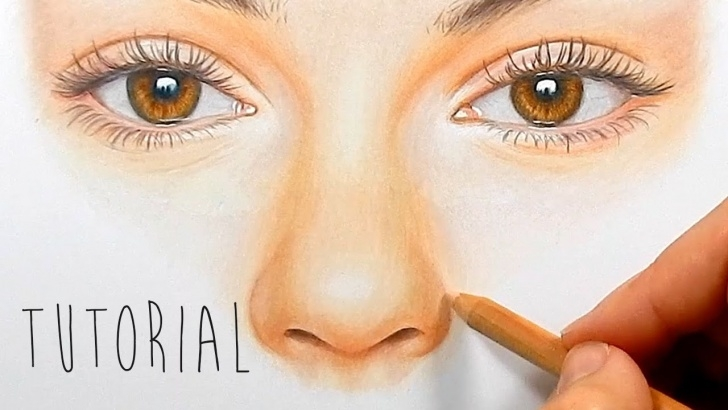 Fascinating Colored Pencil Drawings Step By Step Lessons Tutorial | How To Draw, Color A Realistic Nose With Colored Pencils - Step  By Step | Emmy Kalia Pics