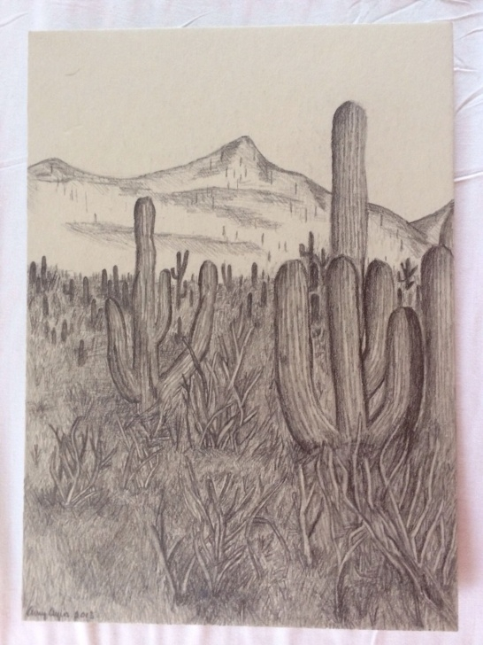 Fascinating Desert Pencil Drawing Techniques for Beginners Arizona Landscape Pencil Drawing | Sketch Me If You Can! | Landscape Picture