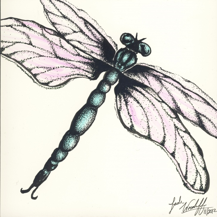 Fascinating Dragonfly Pencil Drawing Simple Dragonfly Pencil Drawing At Paintingvalley | Explore Collection Picture