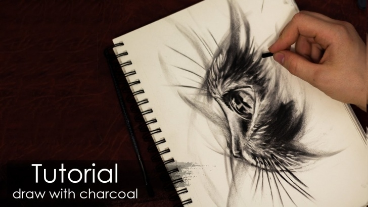 Fascinating Drawing Using Charcoal Pencil Tutorials Tutorial | How To Draw A Cat With Charcoal And Pencil - Sketch Style -  Drawing Techniques Picture