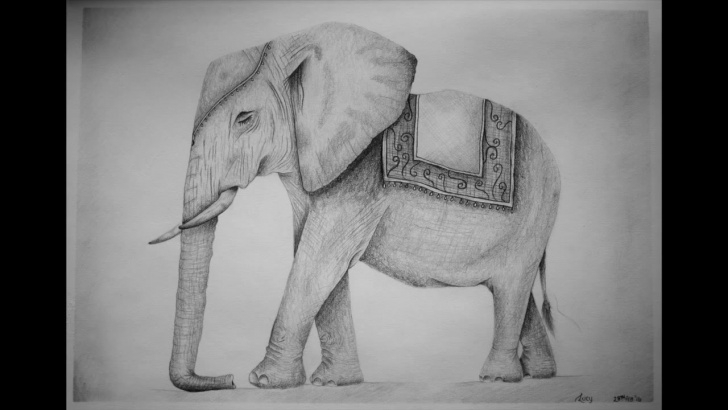 Elephant Pencil Sketch