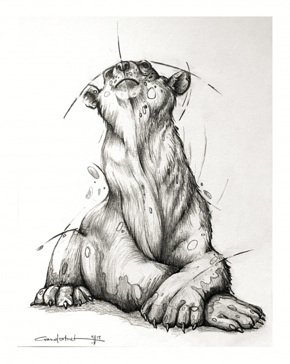 "Fascinating Pencil And Ink Drawings for Beginners Enjoying The Wild"", Pencil / Ink Art : Drawing Photos"