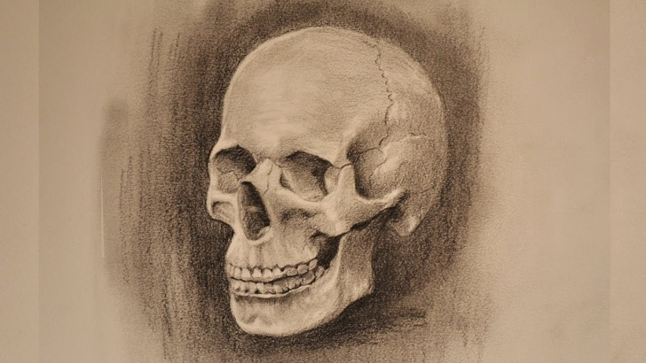 Fascinating Skull Pencil Drawings Step by Step Skull Pencil Sketch Photo