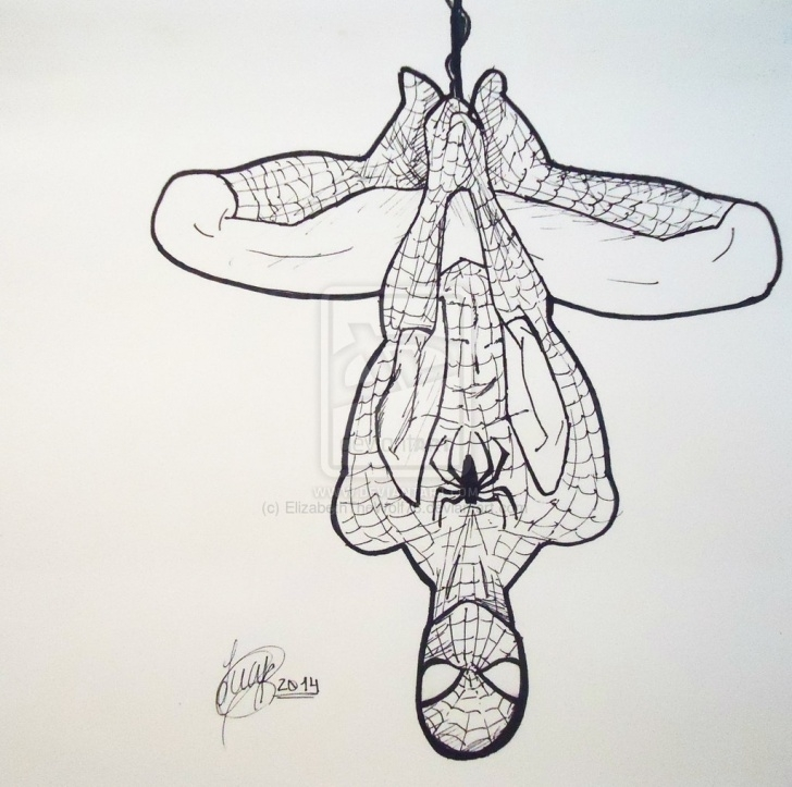 Fascinating Spiderman Drawings In Pencil Easy for Beginners Spiderman Pencil Sketch At Paintingvalley | Explore Collection Picture