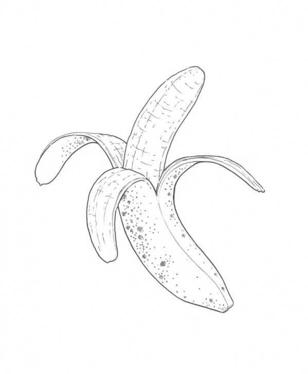 Fine Banana Pencil Sketch for Beginners How To Draw A Banana Pics
