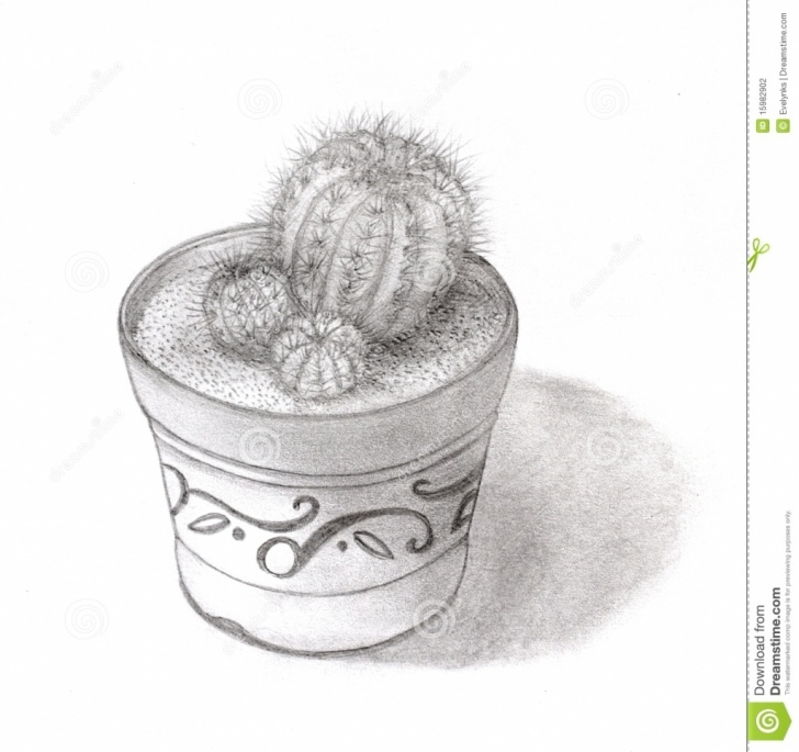 Fine Cactus Pencil Drawing Techniques Cactus Pencil Sketch And Pencil Drawings Of Flower Pots Flower Pots Picture