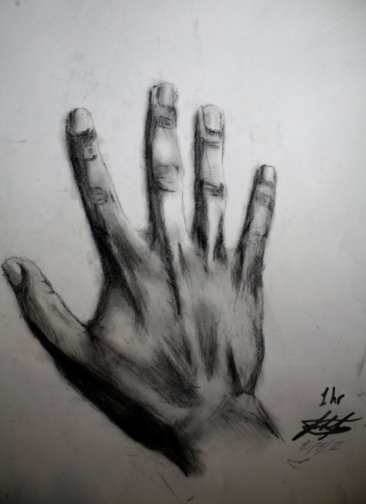 Fine Charcoal Art For Beginners Techniques Charcoal Art Drawings | Charcoal Drawing Of My Hand By Joshfjames Images