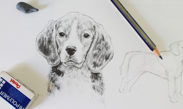 Fine Dog Simple Pencil Drawing Tutorials How To Draw A Dog: A Step-By-Step Tutorial Photos