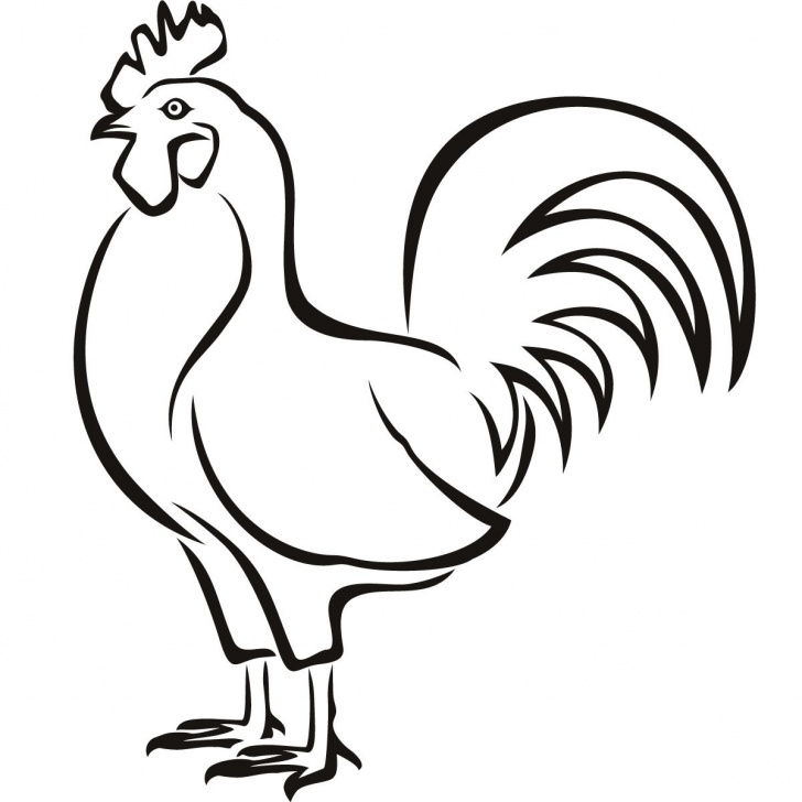Fine Hen Pencil Drawing Lessons Chicken Outline Drawing | Line Art | Chicken Outline, Outline Picture