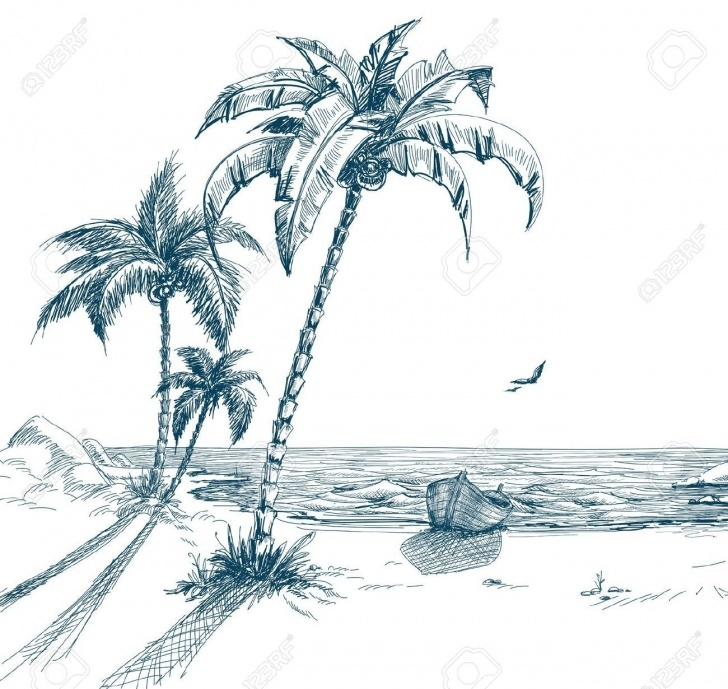 Fine Palm Tree Pencil Drawing Lessons Palm Tree Beach Drawing At Paintingvalley | Explore Collection Image