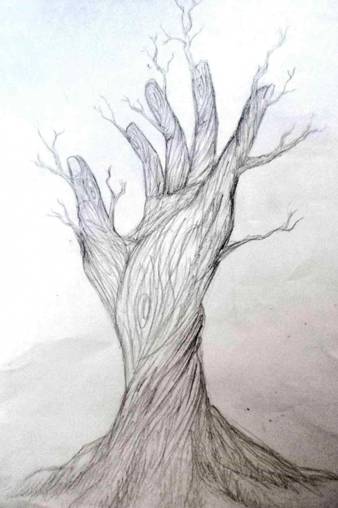 Fine Sketches Of Nature Beauty Free Beautiful Easy Nature Drawings Image