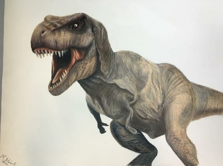 Fine T Rex Pencil Drawing Tutorials Colored Pencil Drawing Of T-Rex. | Art | Pencil Drawings, Colored Photos