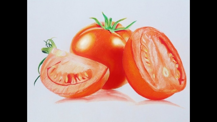 Fine Tomato Pencil Drawing Step by Step Tomato Speed Drawing - Prismacolor Pencils Images