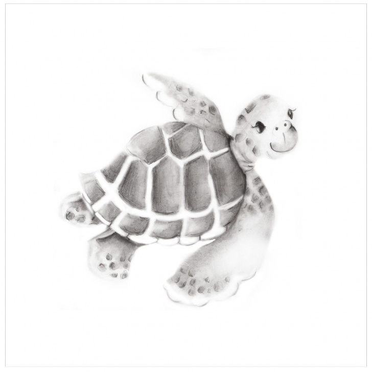Fine Turtle Pencil Drawing Step by Step Sea Turtle Pencil Drawing Print In 2019 | Drawings In Pencil Photos