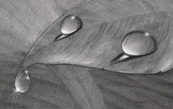 Fine Water Drop Pencil Drawing for Beginners How To Draw Water Drops With Charcoal | Art | Pencil Drawing Photo