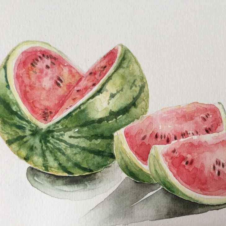 Fine Watermelon Pencil Drawing Step by Step Colored Pencil Grapes Drawing Original Art Still Life | Still Life Pics