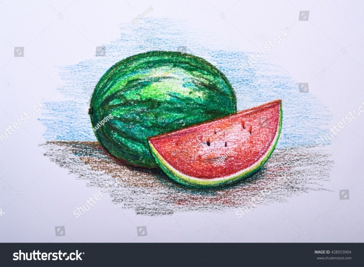 Fine Watermelon Pencil Drawing Techniques Drawing Fruit Colour Pencil Watermelon Stock Illustration 428553904 Picture