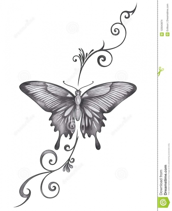 Good Butterfly Pencil Art Courses Art Butterfly Tattoo. Stock Illustration. Illustration Of Background Picture